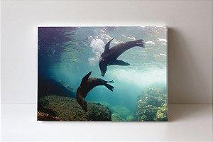 Quadro em Canvas Fundo Mar Golfinhos