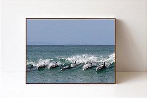 Quadro em Canvas Golfinhos 3