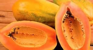 Mamão Comum - und pesando de 700g à 1 kg