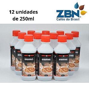 DESCALCIFICANTE LIQUIDO 250ml  GAGGIA/SAECO (12 unidades)