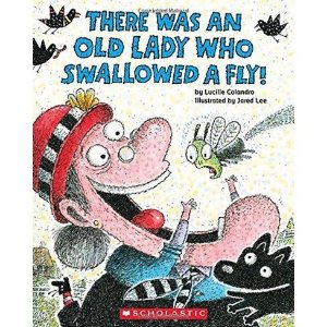 THERE WAS AN OLD LADY WHO SWALLOWED A FLY - BOARD BOOK