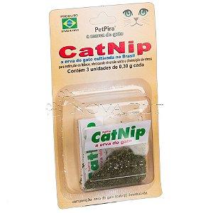 Cat Nip A Erva Do Gato