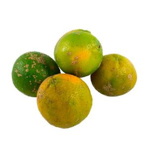Limão Cravo/Rosa (1 kg)