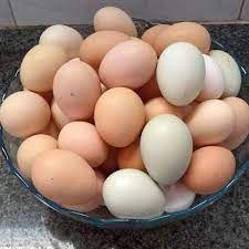 Ovos Caipira (dúzia)