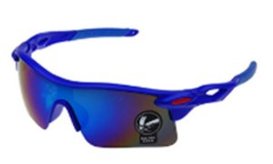 Óculos Ciclismo Prowest Modelo Robust 1 Lente UV400