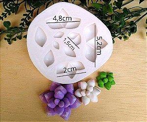 Molde de silicone de Suculentas