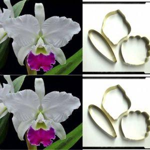 Cortador Mini Orquídea Catleya