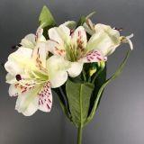 Cortador flor Gloriosa