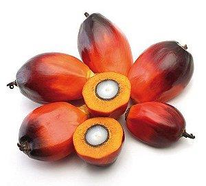 Óleo de Coco Palmiste 120ml