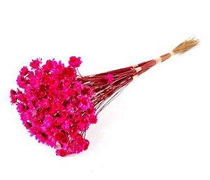 Ramo Sempre-Viva Pink