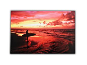Quadro Decorativo Surf