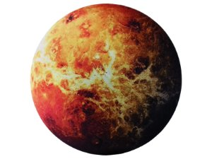 Tapete Vênus - Veludo Metálico