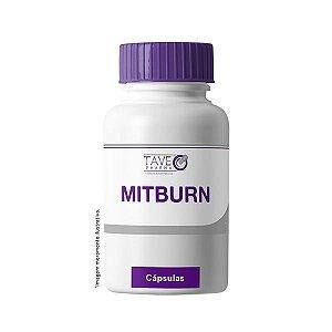 MITBurn