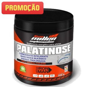 Palatinose (300g) - New Millen