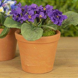 Violeta No Vaso de Cerâmica