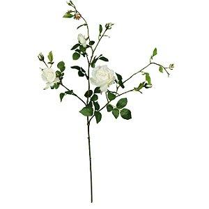 Galho De Rosas Brancas