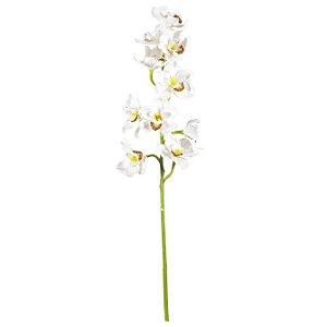 Galho De Orquídea Cimdibium