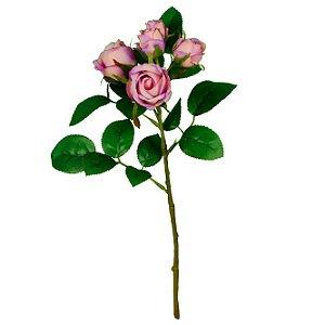 Galho De Botões De Rosas