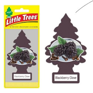 Little Trees Blackberry Clove