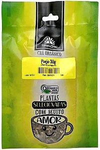 Kampo de Ervas Chá de Poejo Orgânico Fracionado 30g
