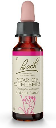 Florais de Bach Star of Bethlehem Original