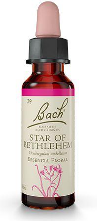 Florais de Bach Star of Bethlehem Original