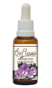 Bio Florais Momento do Estudante 37ml