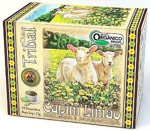 Tribal Brasil Chá de Capim Limão, Melissa e Maracujá Orgânico Caixa 15 Sachês