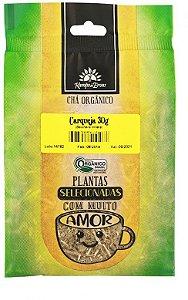 Kampo de Ervas Chá de Carqueja Orgânico Fracionado 30g