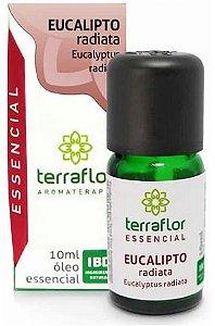 Terra Flor Óleo Essencial de Eucalipto Radiata 10ml