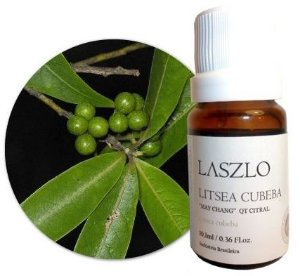 Laszlo Óleo Essencial de Litsea Cubeba / May Chang QT Citral 10,1ml