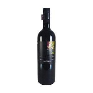 Vinho Bordô Tinto Seco Orgânico - Coopeg 750 ml