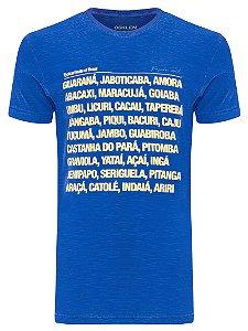 Camiseta Osklen Rough Tropical Fruits masculina