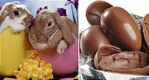Curso de Chocolate, Bombom e Ovos de Páscoa