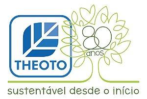 PALITO DENTE MADEIRA SACHET PAPEL (CX C/ 2000un) - THEOTO