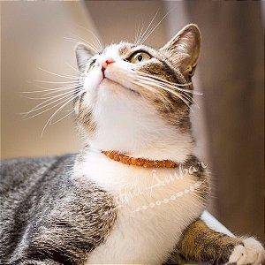 Coleira de âmbar para cães e gatos Lithu Âmbar Pets - conhaque bruto