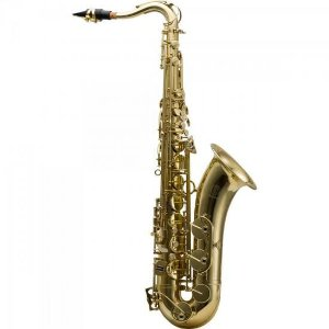 Saxofone HARMONICS Tenor Bb HTS-100L Laqueado