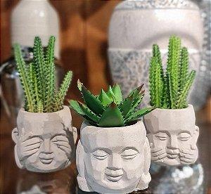 trio budas decorativos com planta