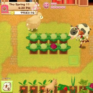 Switch Harvest Moon: Light of Hope Special Edition