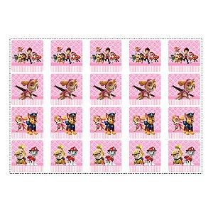 20 Adesivos Patrulha Canina Rosa para Lembrancinha Quadrado 4,7cm
