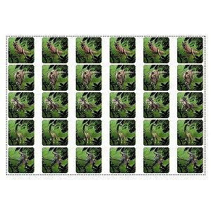 30 Adesivos Dinossauros Quadrado 3,7cm