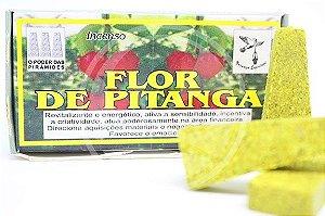 DEFUMADOR DE FLOR DE PITANGA