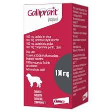 ELANCO GALLIPRNT 100MG PARA CÃES COM 34 A 100KG