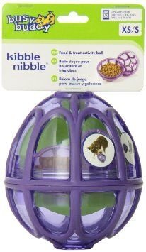 BRINQUEDO EDUCATIVO BUSY BUDDY KIBBLE NIBBLE