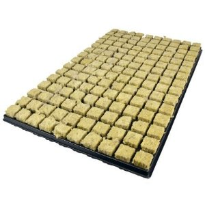 Bandeja de Lã de Rocha Stone Wool Tray  2,5 x 2,5 x 4 cm Cultilene
