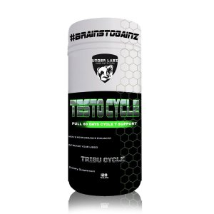 TESTO CYCLE 120 TABLETS - UNDER LABZ