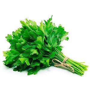 Cheiro Verde Coentro Pacote