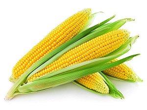Milho Verde (Espiga)