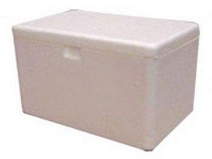 Caixa de Isopor 1 litro