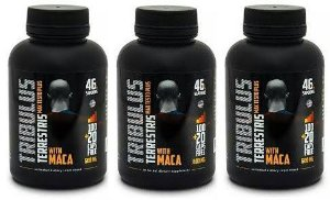 Combo 3 Tribulus Terrestris 500mg + maca 100mg c/120 cápsulas - Max Testo